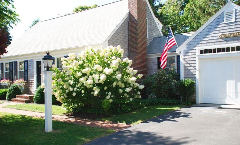 Welcome to The Little Caper at 17 Palmer Drive Chatham Cape Cod - New England Vacation Rentals
