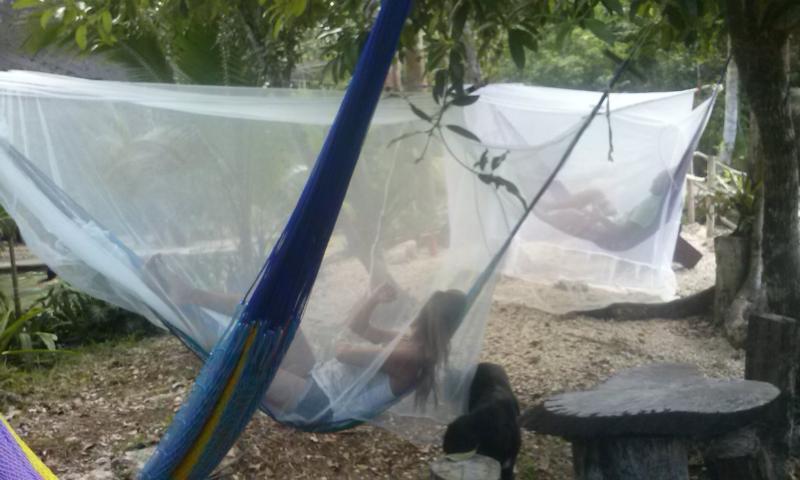 Hamacas with mosquiteros