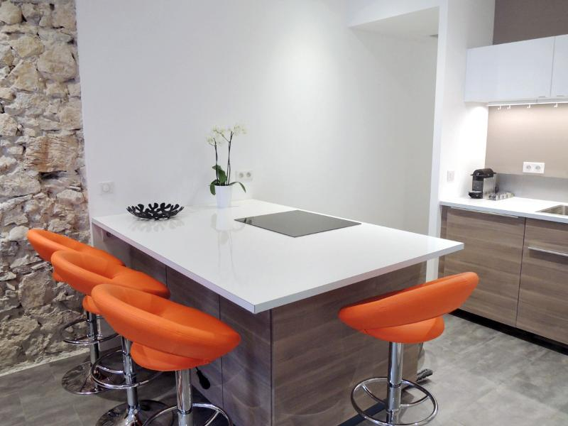 great modern kitchen with dish-washer, microwave etc...