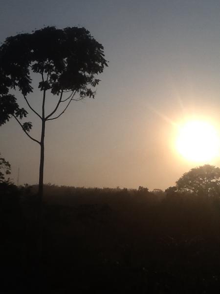 Le levé du soleil tropical. La force du soleil perce la buée du matin