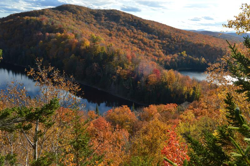 Scenic Outlook around October 18