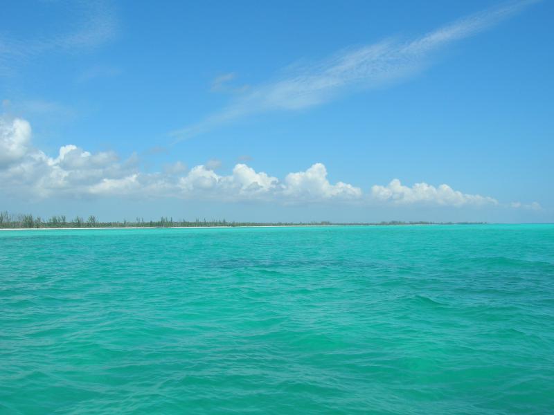 Cristal clair océan chaud.  Parfait pour la baignade, kayak, pêche ou juste pour s'asseoir et regarder !