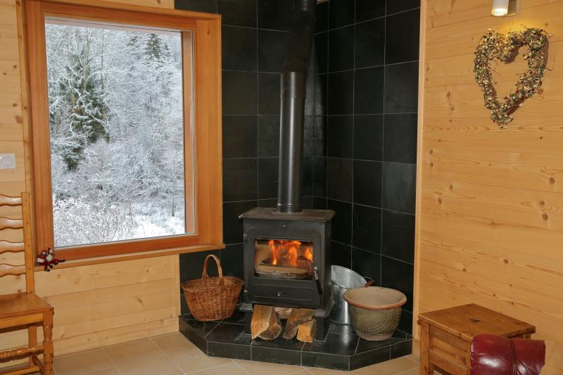 Log burning stove supplied with wood- Chalet fitted with smoke and carbon monoxide alarms