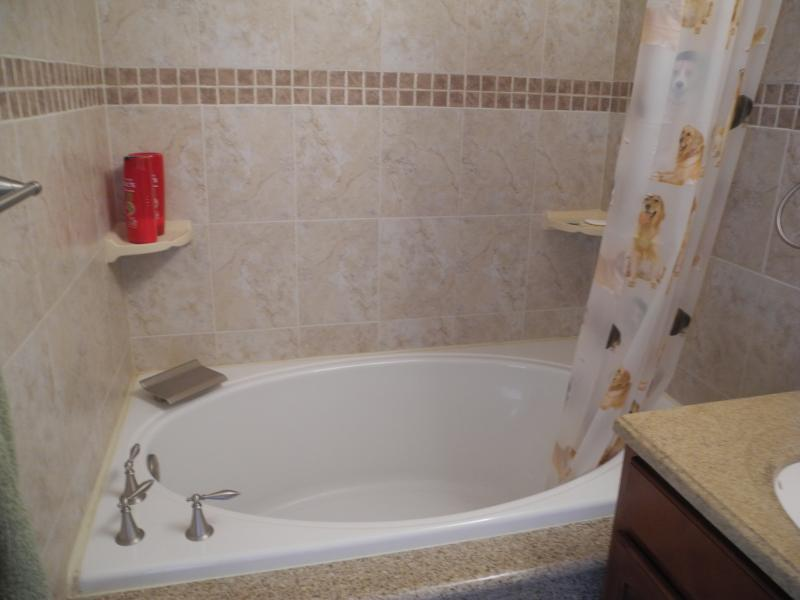 Large soaker tub with waterfall faucet.