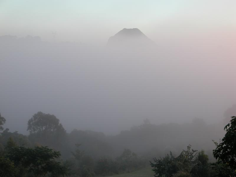 Cooroora Mountain in early morning mist