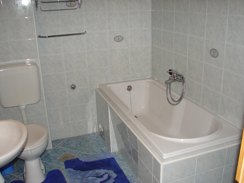 A2 plavi (5 + 2): badkamer met toilet