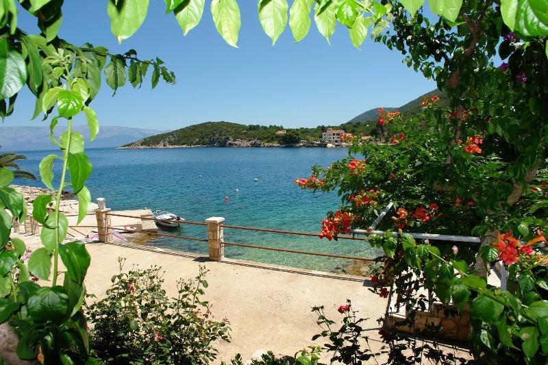Nikola - 5 m from beach: SA(2+0)A - Cove Pokrivenik, vacation rental in Pokrivenik