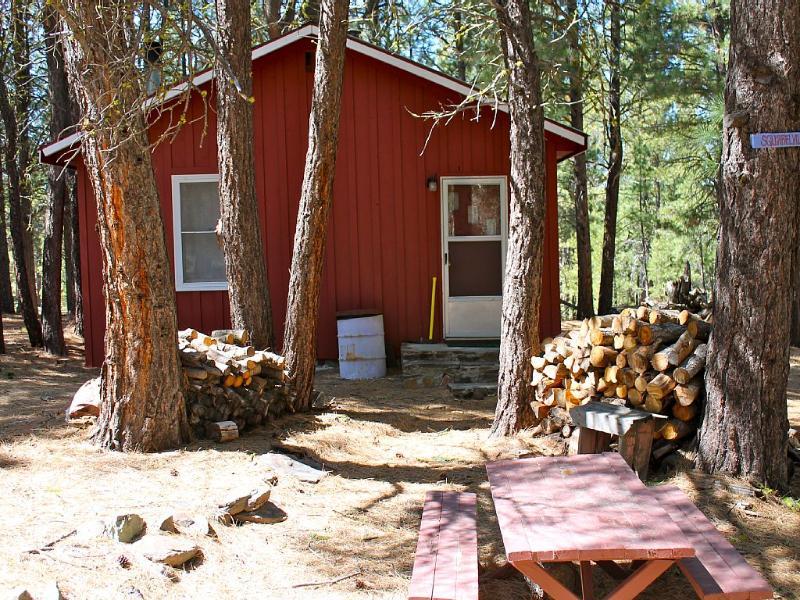 """""""Squirrelville"""" cabin"""