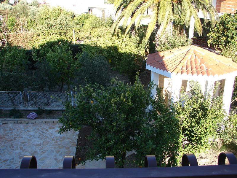 SA1(2): terrace view