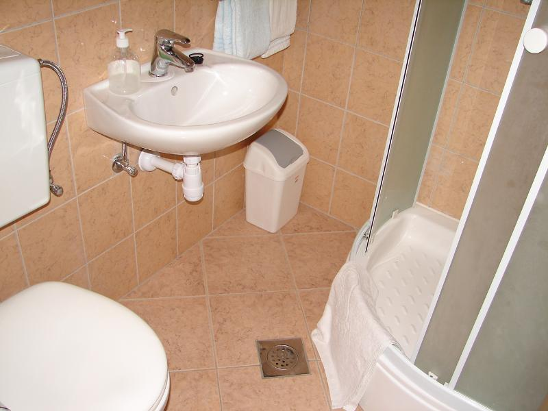 SA4 (2): salle de bain avec toilette