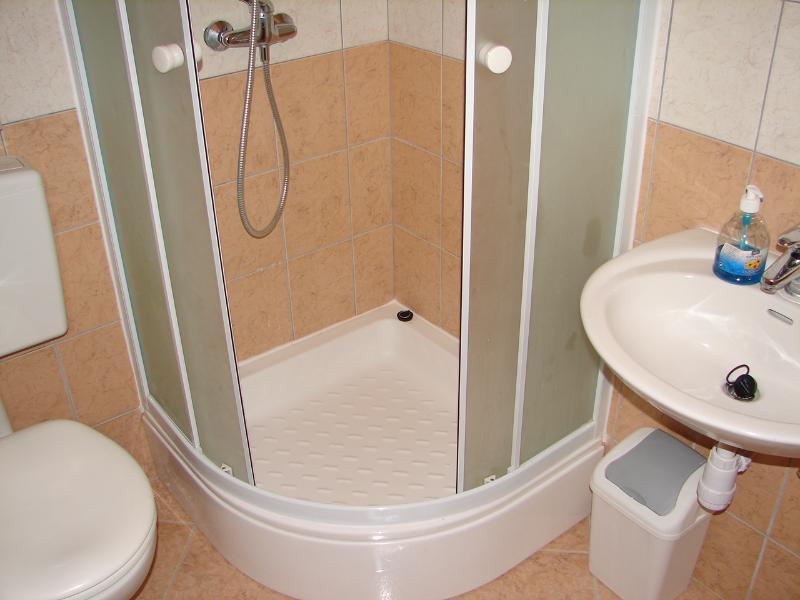 A5(5): bathroom with toilet