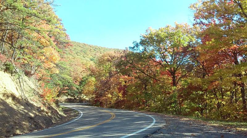 The drive over South Holston Mountain is spectacular in the Fall!