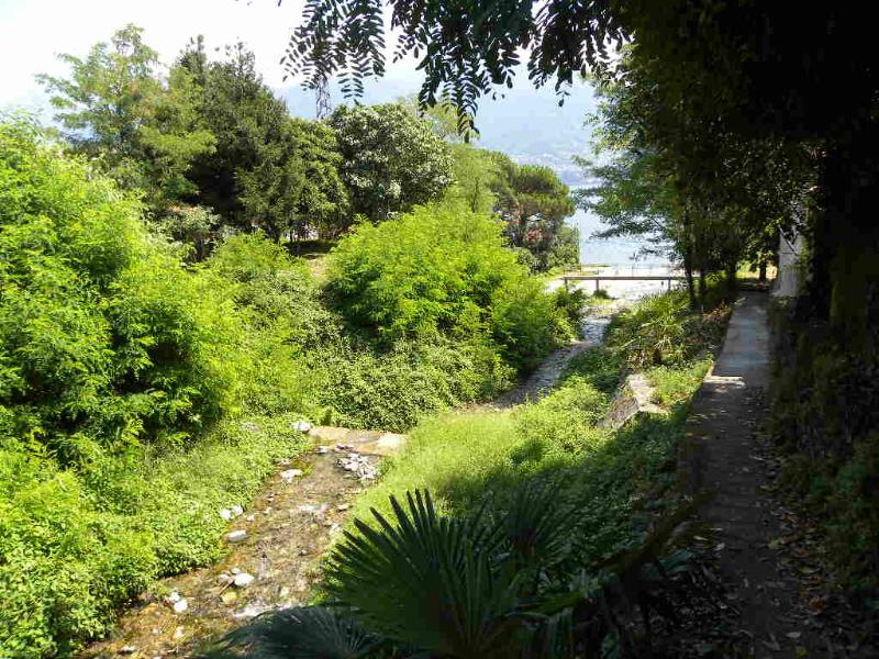 The vegetation is everywhere lush. Around the Lake is a subtropical climate.