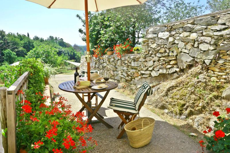 Relax al fresco view from an olive farm!