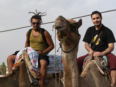 Camel Safari in pushkar, holiday rental in Ajmer District
