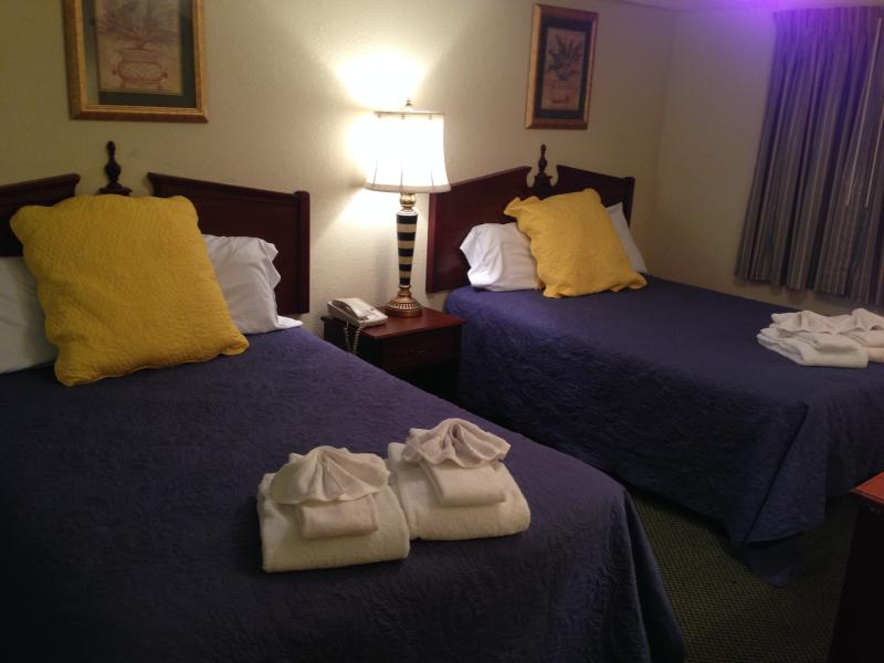 2 Queen-size bed in the guest room