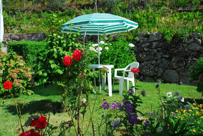 jardim garden