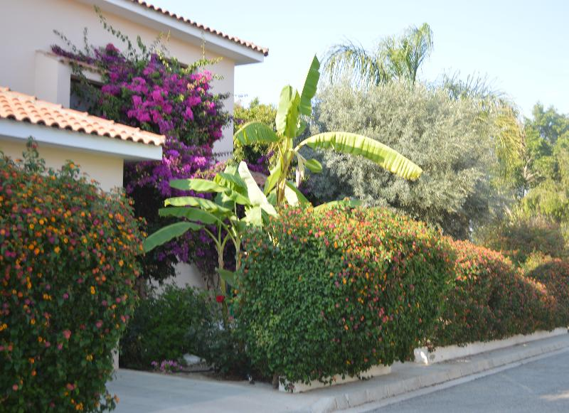 Three bedroom villa,private pool,patio,BBQ,parking,free wifi in a peaceful location,2.5 km from sea
