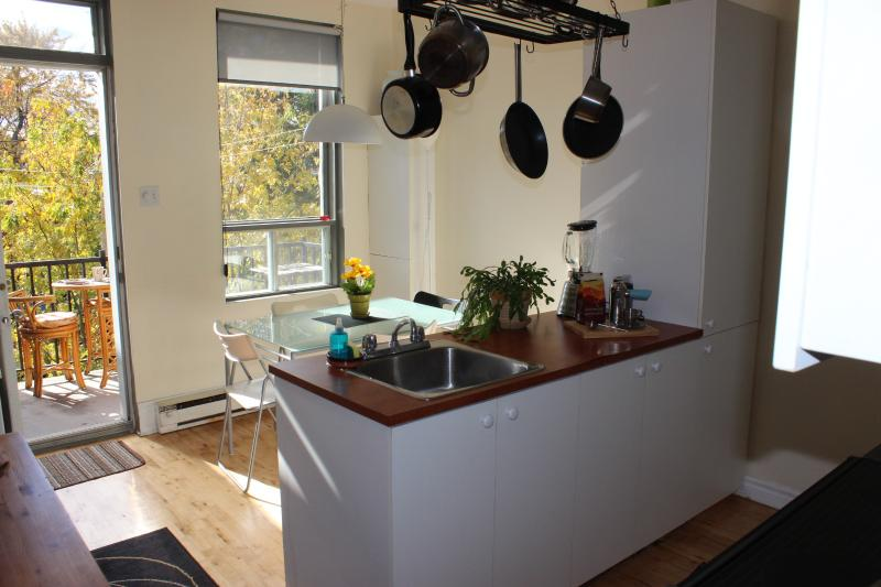 COZY & BRIGHT 1 BEDROOM APT +  TERRACE ON ROSEMONT, vacation rental in Montreal
