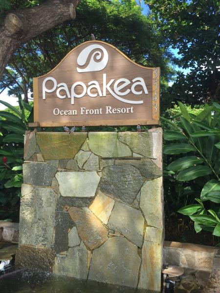 Your West Maui Home- Papakea Oceanfront resort G 404!!