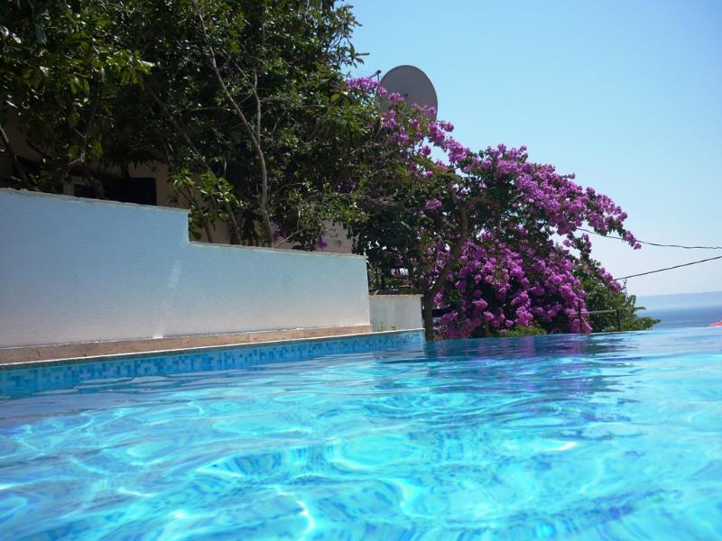 Villa Inge-App 1, vacation rental in Donji Seget