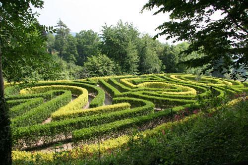 Local outing - the maze at Painswick Rococo Garden