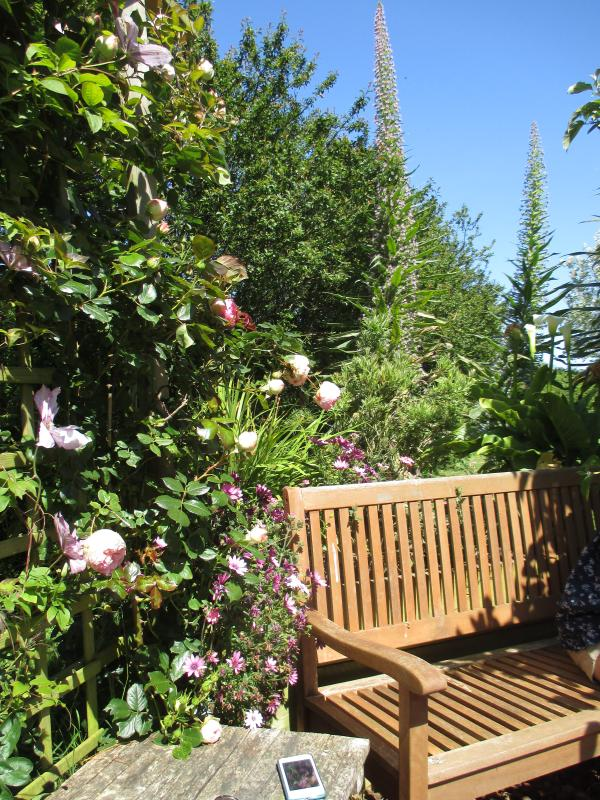 The arbour where you can sit and watch your children play in the shared garden