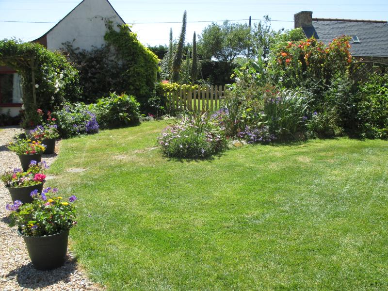 Part of the shared garden which has won the local 'Maison Fleurie' prize many times