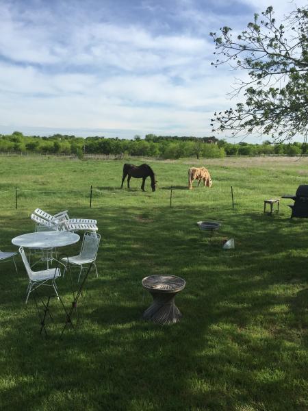 Bridlespur Animal Rescue Ranch, location de vacances à Georgetown