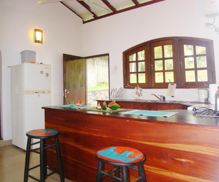 Kitchen opens onto back terrace