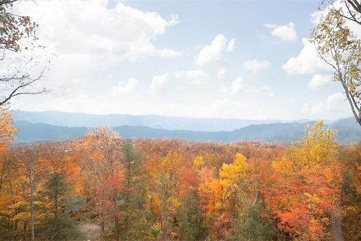 Fall Foliage View From 5 Star View