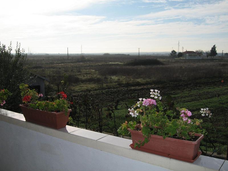 A1 (2 + 2): Blick auf die Terrasse