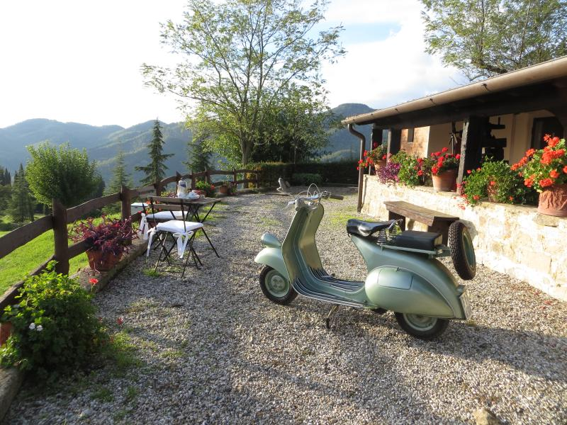 Poiana with amazing view, holiday rental in Dicomano