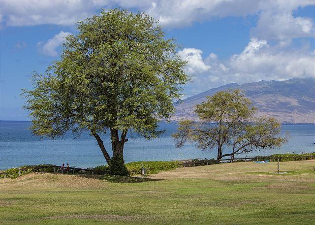 Kamaole Beach Park si trova dall'altra parte della strada rispetto a Kamaole Sands