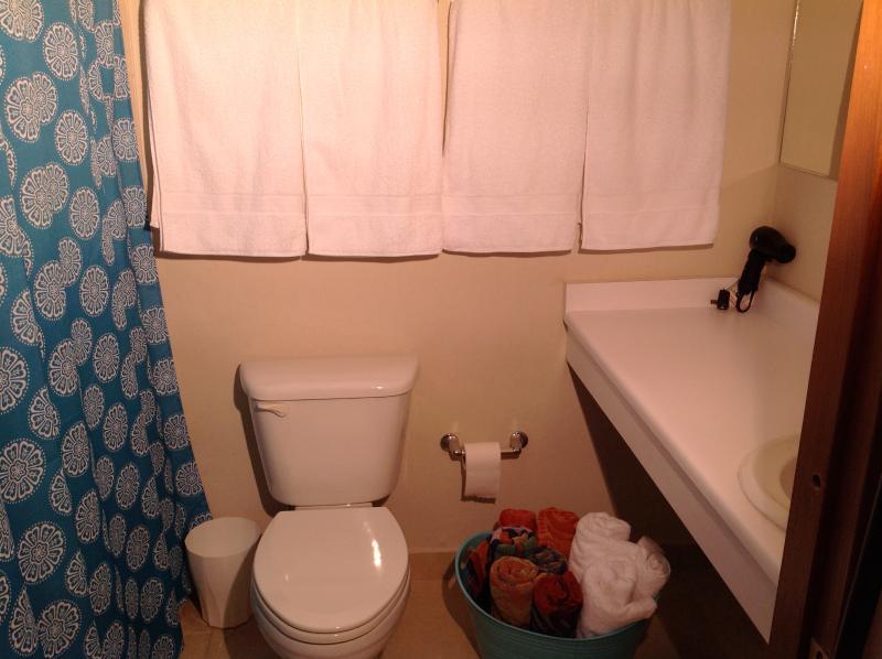 Segundo piso completo cuarto de baño con bañera/ducha.