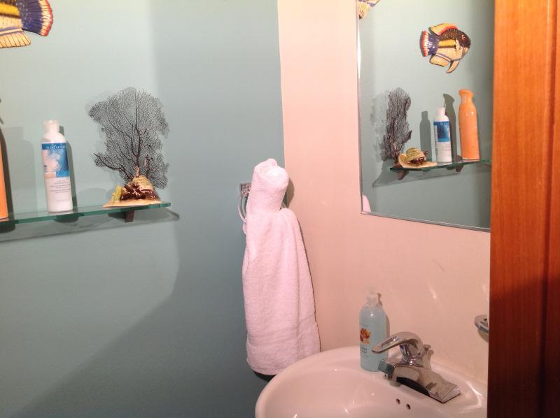 Planta baja medio baño.