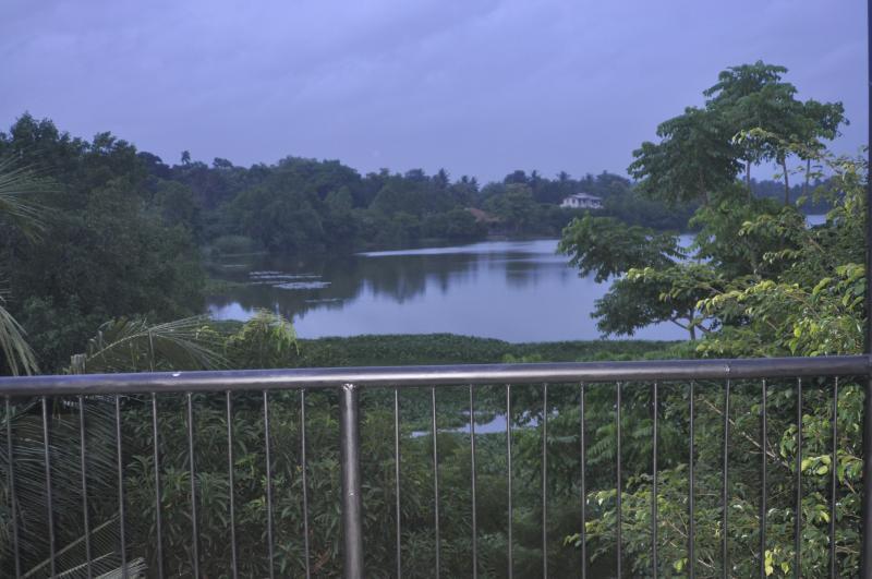 Bolgoda lake view from the balcony