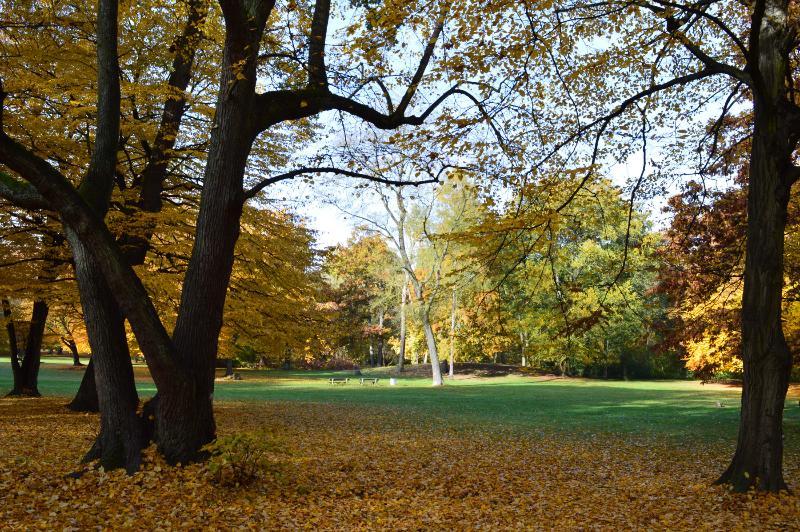 Schlosspark Niederschönhausen in 400 m Entfernung