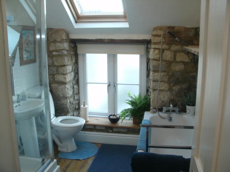 Salle de bain avec baignoire et douche séparée. Porte-serviettes chauffant supplémentaire derrière la porte. Nouvelle douche maintenant sur place.