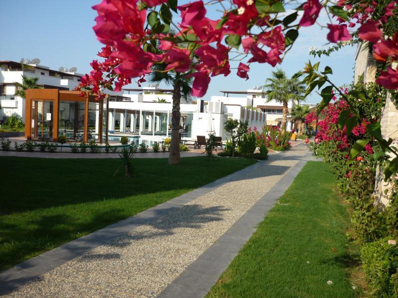 Lovely groundfloor apartment, Ferienwohnung in Okurcalar