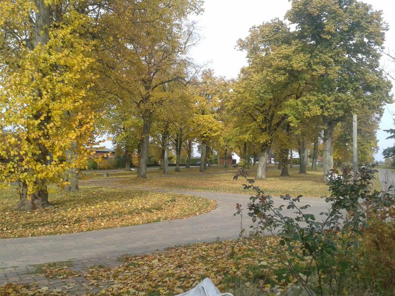 Das Dorf - the village.