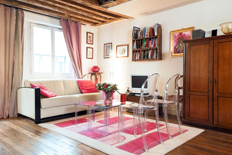 Stunning loft in the very heart of Paris (Louvre), location de vacances à Paris