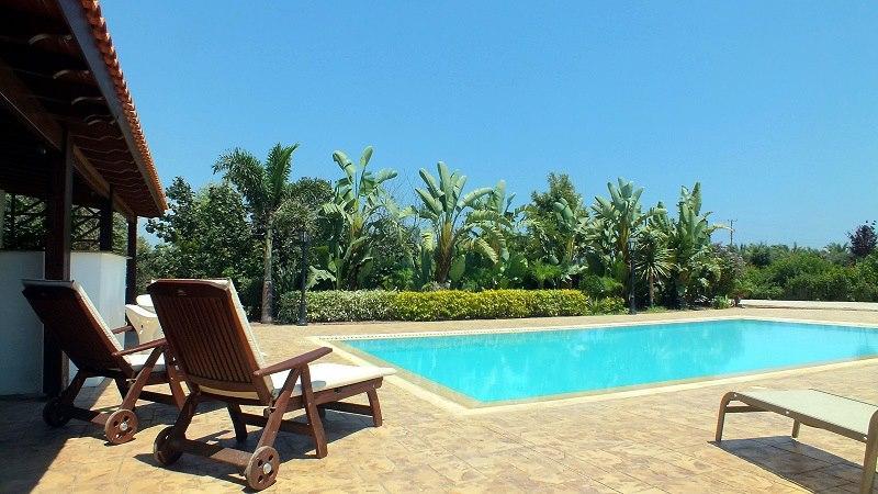 Garden Villa, holiday rental in Pervolia