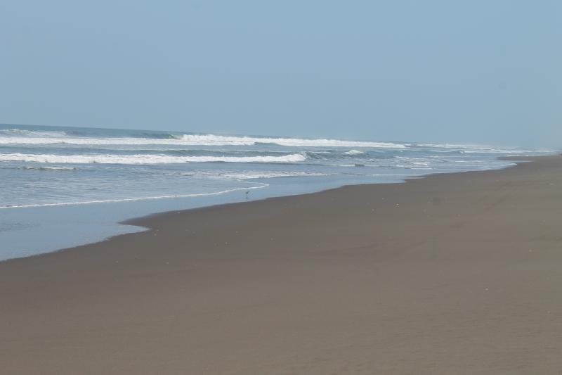 Great walks & sea shell hunting on our beautiful Barra de Santiago beach.
