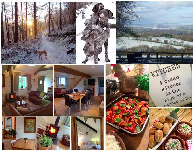 Brechfa Forest Barns, Ferienwohnung in Carmarthenshire