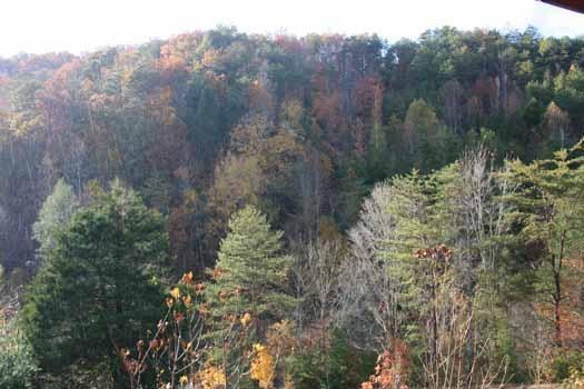 Vista desde Eagle Loft