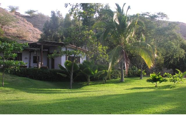 Casa Surfingbirds Mancora, vacation rental in Cancas