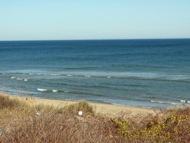 Las playas atlánticas de Eastham te están llamando.