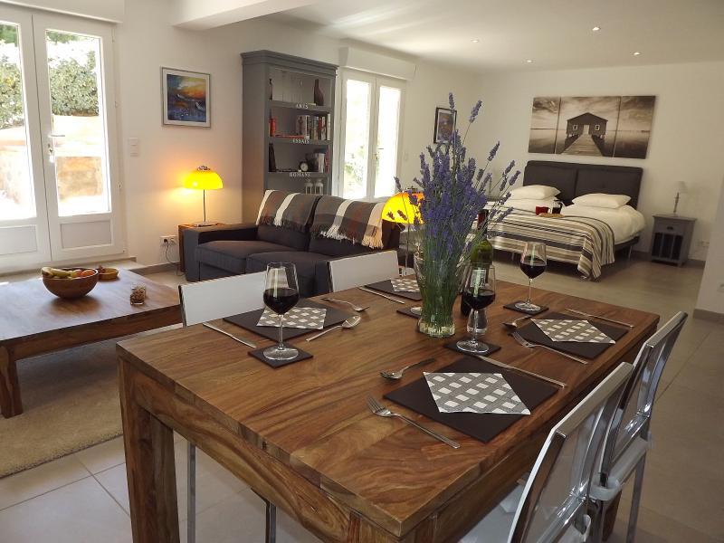 Wow, Studio Mimosa, very spacious open plan studio apartment