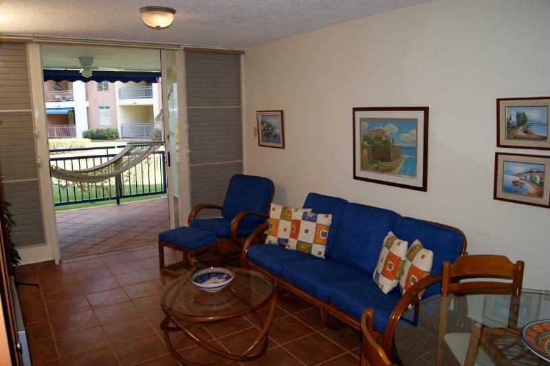 Un'altra vista del soggiorno zona soggiorno. Amaca.